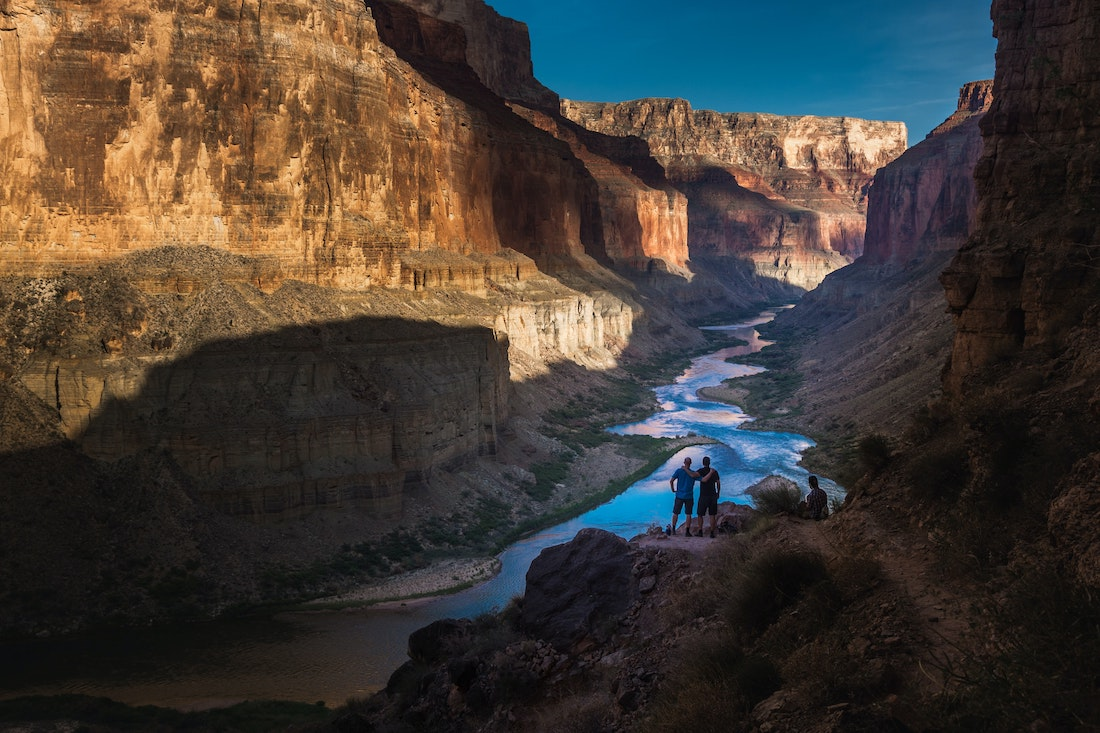 In the Grand Canyon, Scientists Struggle to Bring Back the Bugs