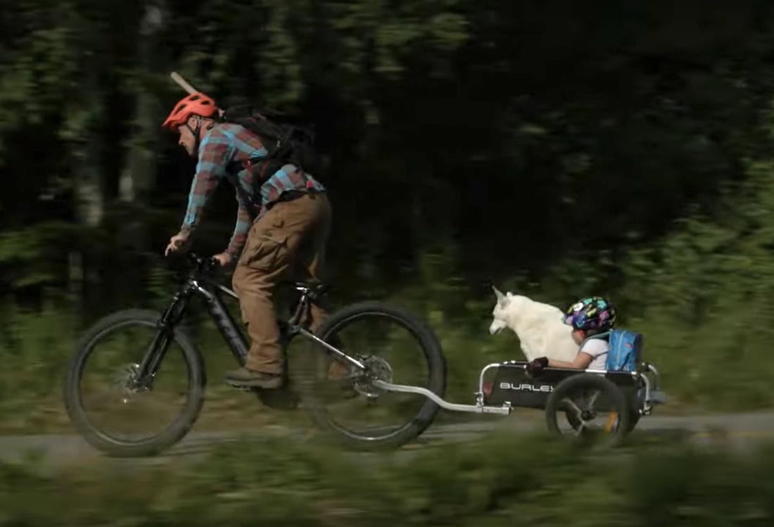 Love 'Em or Hate 'Em, E-Bikes Are Like Work Trucks for Trail Builders