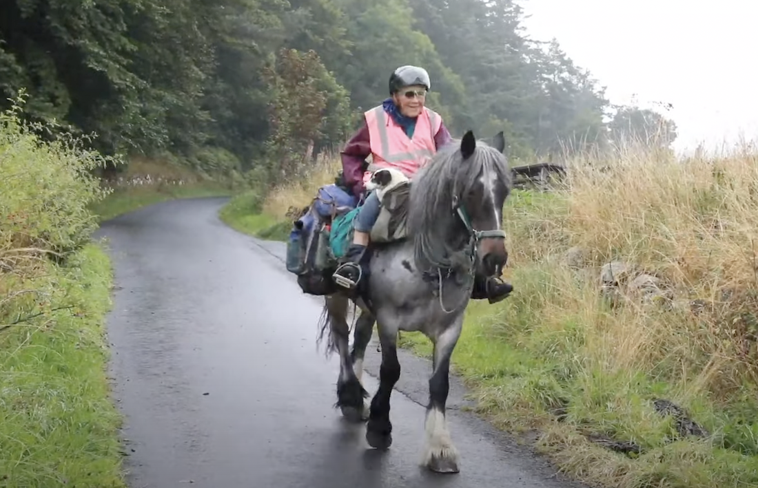 80-Year-Old Jane Packs Her Dog On Her Horse for Annual 600-Mile UK Ride